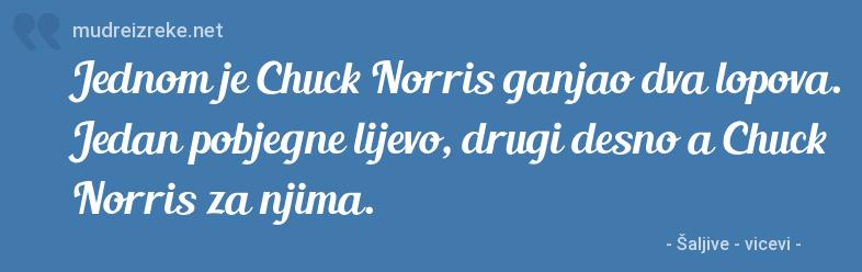 Poruka: Jednom je Chuck Norris ganjao dva lopova. Jedan pobjegne lijevo, drugi desno a Chuck Norris za njima.